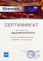 Certificate - Stewart